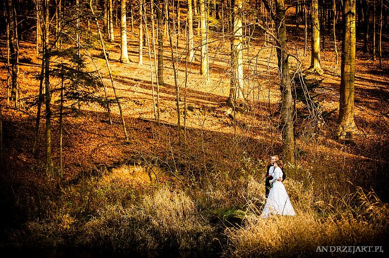 Fotografia ślubna Strzyżów (35)
