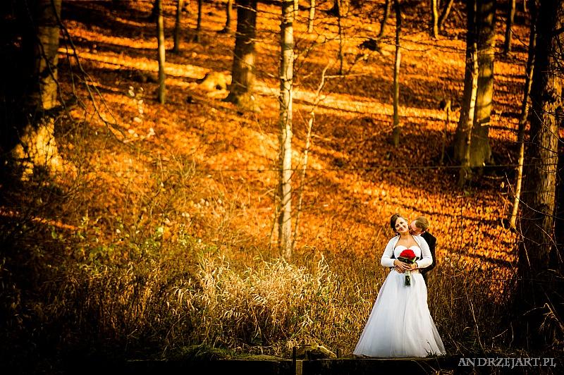 Fotografia ślubna Strzyżów (37)