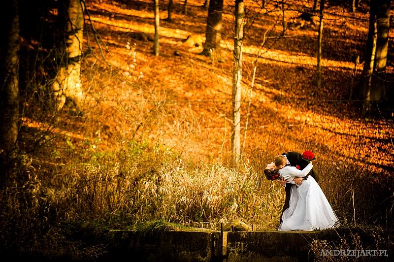 Fotografia ślubna Strzyżów (38)